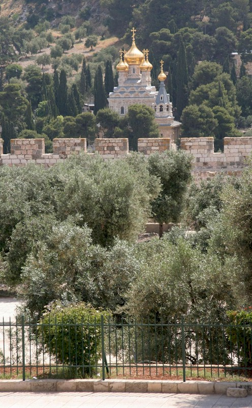 The Mount of Olives with the Olive estate